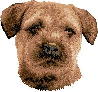 Hundbrodyr Border terrier