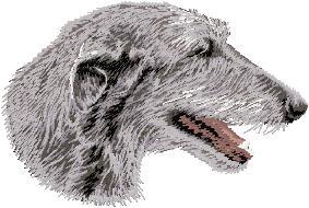 Hundbrodyr Skotsk hjorthund