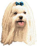 Hundbrodyr Malteser