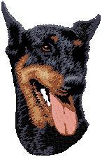 Hundbrodyr Doberman kuperad