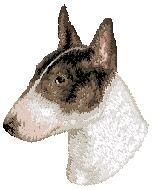 Hundbrodyr Bullterrier vit/brun