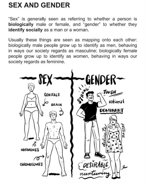 Gender: A Graphic Guide - Meg-John Barker and Jules Scheele Provide a Concise and Accessible Exploration of Gender Identity
