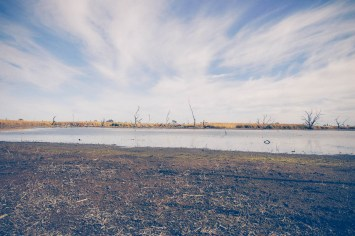 Macquarie Marshes
