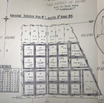 The irrigation and settlement block plan at Pera Bore, 1895.