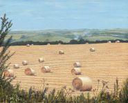 Roll a Hay A4 jpeg