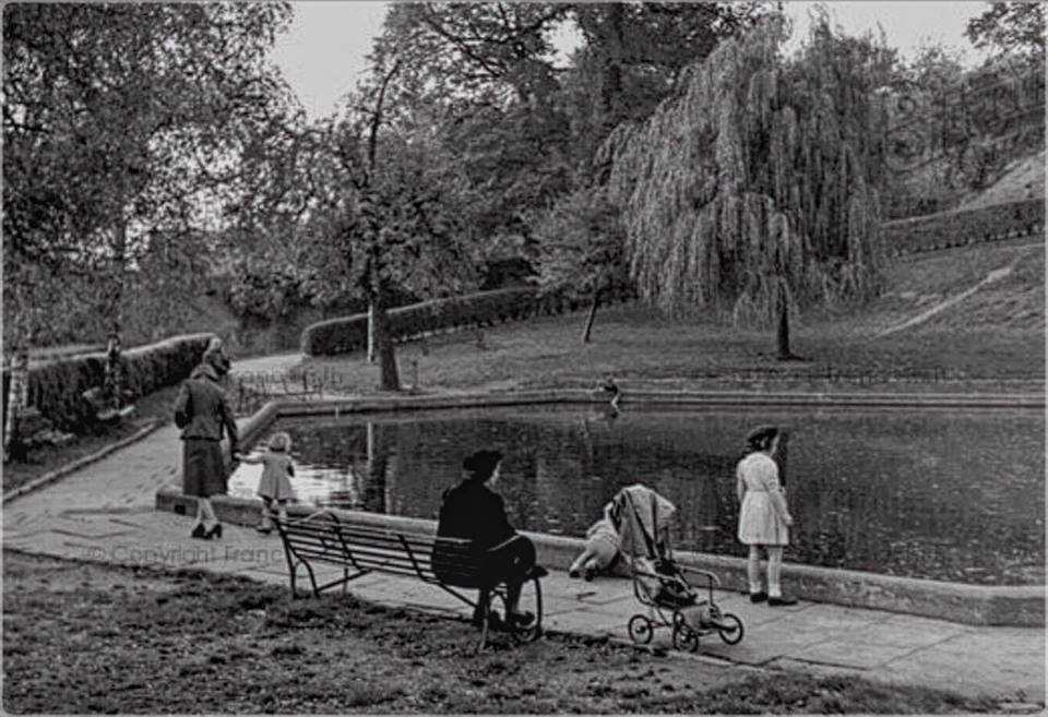 ladies on seat children around pond