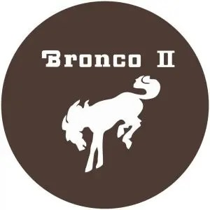 Bronco II Tire Cover Brown