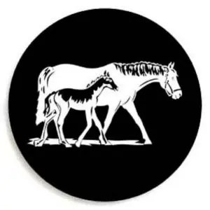 New Foal Tire Cover
