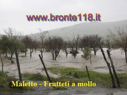 malt10032012 12