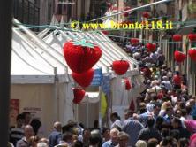 sagra05062011 4