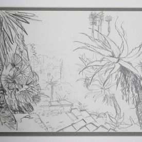 La Mortola garden. Aloe princeps