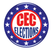 2011 Community and Citywide Education Council Elections