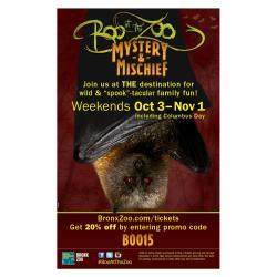 Special Offer for Boo at the Zoo