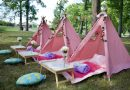 Pink Princess Party Boutique Offering Fun Party Rentals