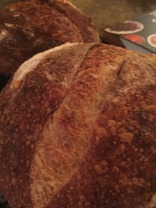 French sourdough boules