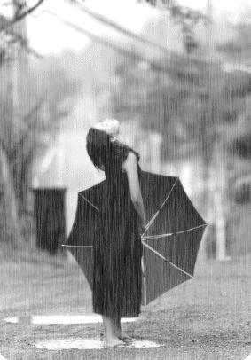 bronze mag rain