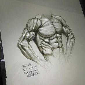 Quick torso anatomy study sketch based on photo ref