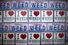 i_love_weed_ca