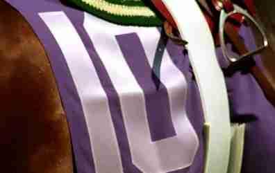 lexington_kentucky_10_horse_sm