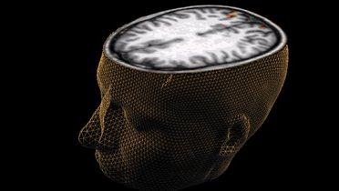Neglecting Neuroscience Has Criminal >> Cognitive Neuroscience And The Future Of Punishment