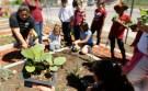 students_garden001
