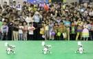 china_robots002