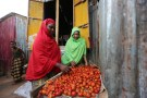 """Newly married Huda Omar (R) and her sister-in-law Rahma Noor look at tomatoes at Mogadishu's Rajo camp, Somalia August 30, 2016. REUTERS/Feisal Omar       SEARCH """"SOMALIA WEDDING"""" FOR THIS STORY. SEARCH """"WIDER IMAGE"""" FOR ALL STORIES. - RTSNIJB"""