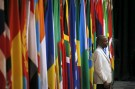A visitor stands in front of flags representing different African countries during a Forum on China-Africa Cooperation in Sandton, Johannesburg, December 4, 2015. REUTERS/Siphiwe Sibeko - RTX1X5GY