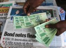 A street vendor poses with new bond notes in the capital Harare, Zimbabwe, November 28, 2016. REUTERS/Philimon Bulawayo - RC1810B8F2E0