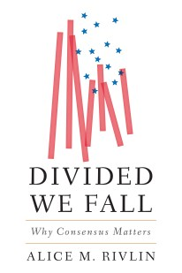 Cover: Divided We Fall