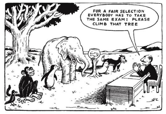 cue_fair-selection