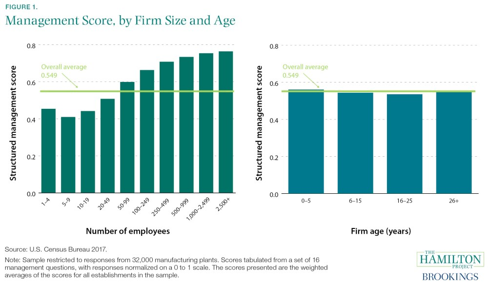 Management Score, by Firm Size and Age