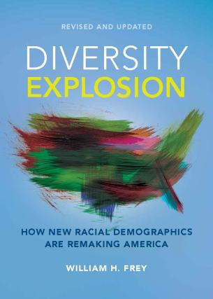 """Diversity Explosion"" cover."