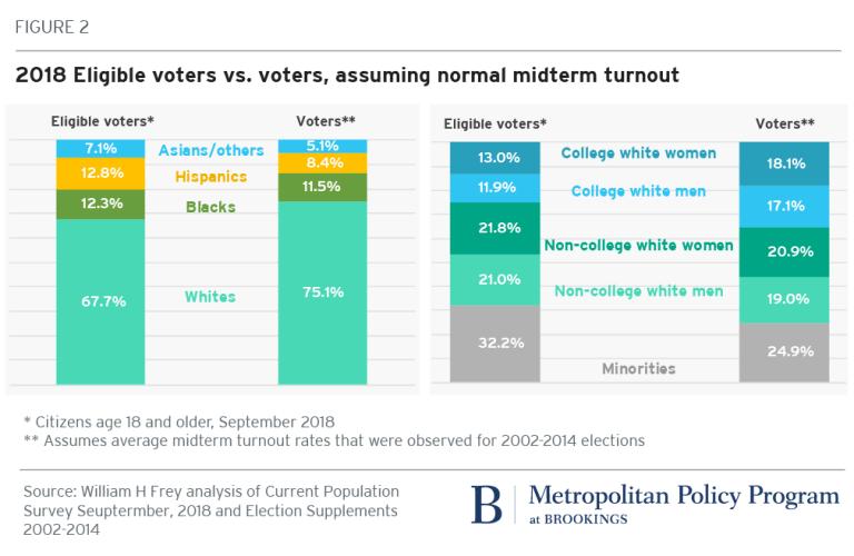 Frey voter turnout figure 2
