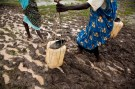 Women carry water through the flooded Jamam refugee camp in South Sudan's Upper Nile July 1, 2012. REUTERS/Adriane Ohanesian (SOUTH SUDAN - Tags: SOCIETY ENVIRONMENT) - GM1E87217LH01