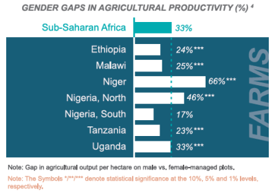 Figure 2 Gender gaps in agricultural productivity