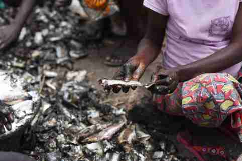 Women apply salt to dried fish at an artisanal fish processing facility in the Senegalese coastal town of Joal-Fadiouth, April 10, 2018. Picture taken April 10, 2018.   To match Special Report OCEANS-TIDE/SARDINELLA   REUTERS/Sylvain Cherkaoui - RC1E49820D10
