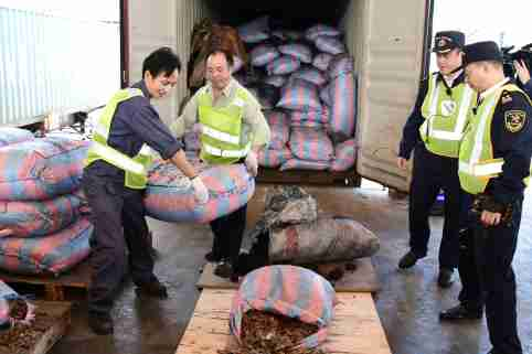 Chinese customs officials carry sacks of pangolins scales they seized on a ship in Shenzhen, Guangdong province, China November 29, 2017. Picture taken November 29, 2017. REUTERS/Stringer ATTENTION EDITORS - THIS IMAGE WAS PROVIDED BY A THIRD PARTY. CHINA OUT.