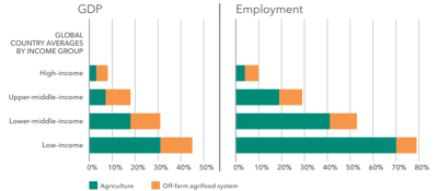 Figure 1. As economies grow, agri-food job creation shifts beyond the farm, while on-farm jobs become fewer and better