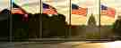 United,States,Capitol,Building,Silhouette,And,Us,Flags,Around,Washington