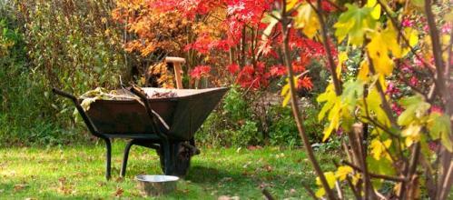 fall_garden_workshop