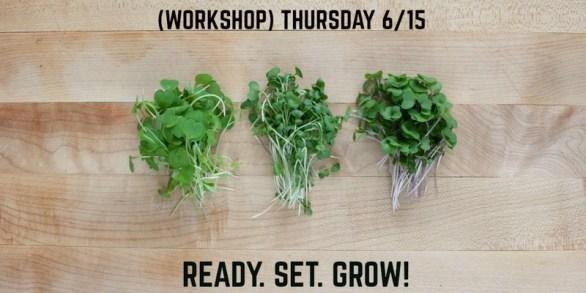 ready set grow workshop argitecture