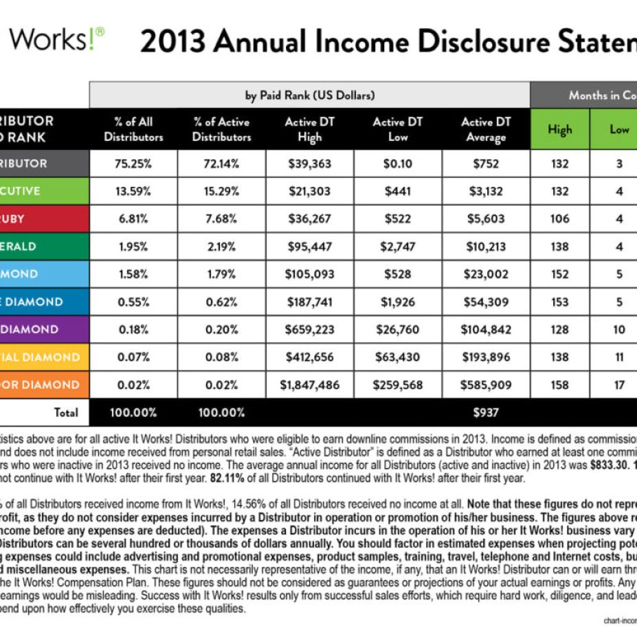 2013 itworks income statement
