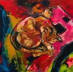 Chat sur fond rouge et rose n°1