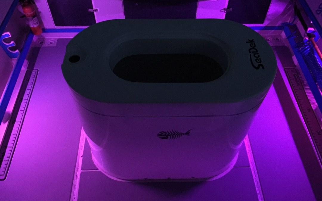 LED Lights and SeaDek Floor