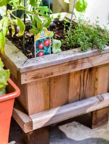 Small Patio Garden Inspiration. Grow your own fruit and vegetable garden, even if you have a small space. Container gardening is perfect for creating an outdoor haven.