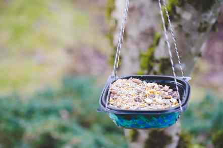 Create your own upcycled DIY bird feeder out of soup bowls from Chick-fil-A. This spring craft is easy and fun for kids.