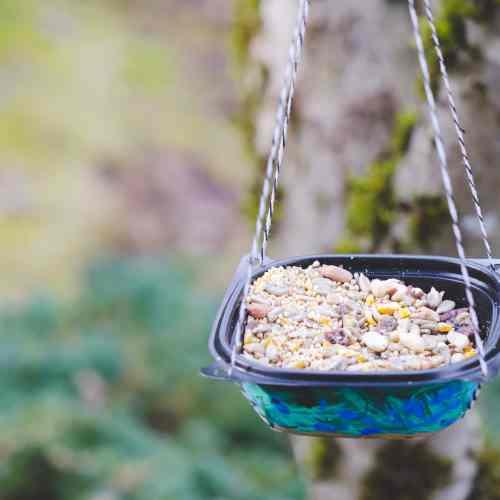 Upcycled DIY Bird Feeder