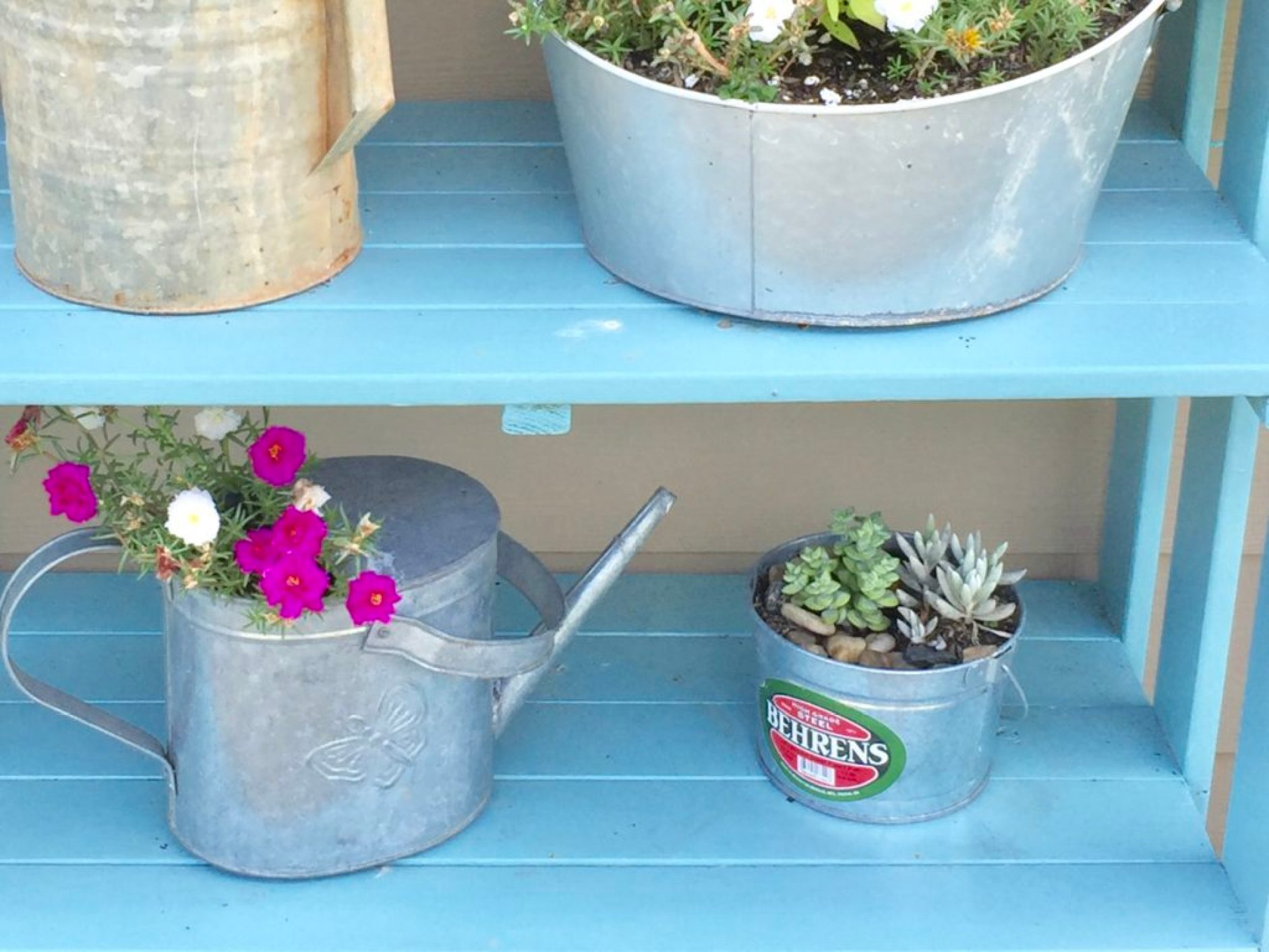 DIY planter from paint bucket