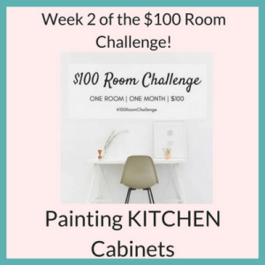 Thrifty Kitchen Makeover – $100 Budget, Week 2